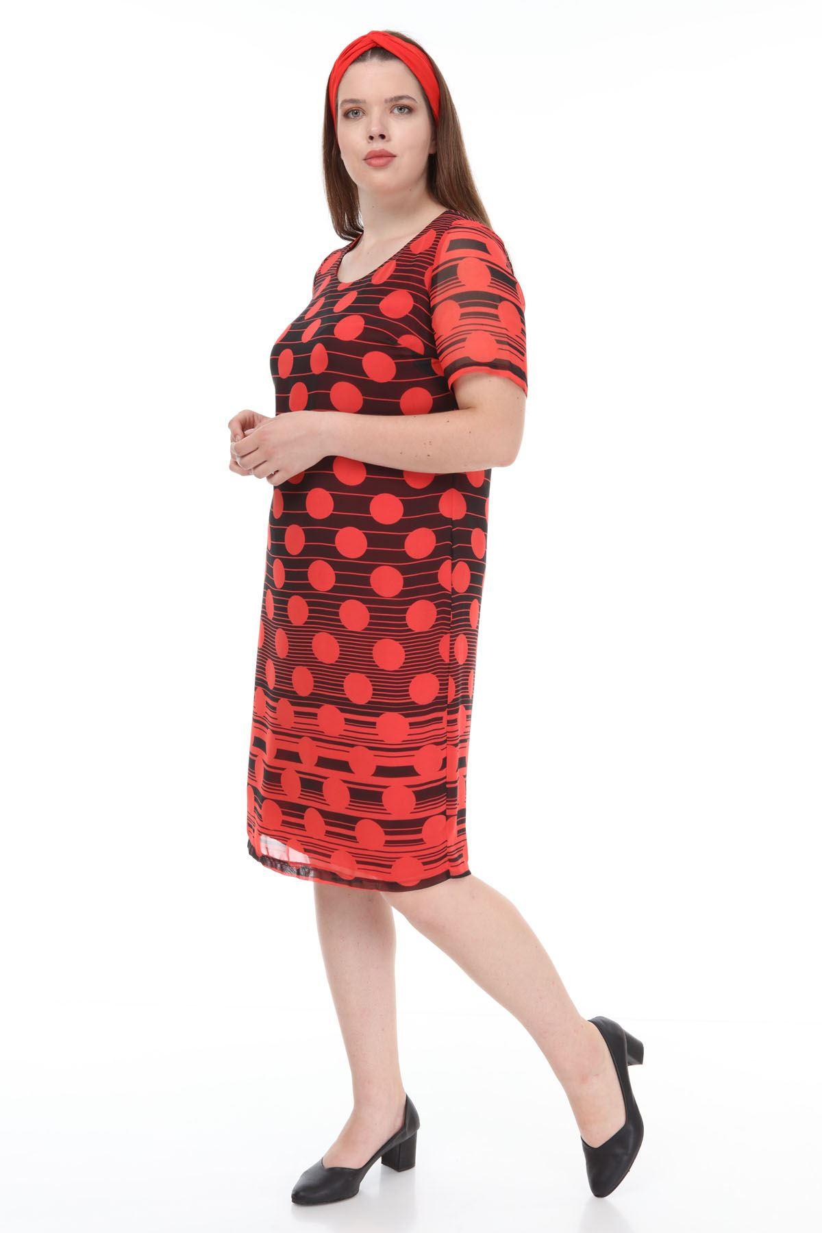 Siyah Büyük Puanlı Şifon Elbise F2-1124