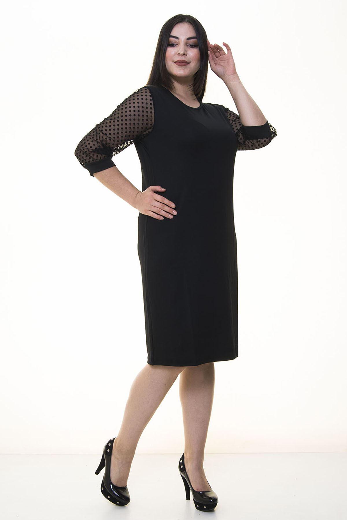 Kolları Puanlı Büyük Beden Elbise 16D-20471